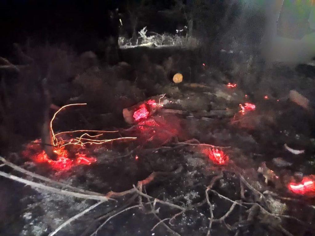 Circulaţie feroviară blocată în Brazi din cauza unui incendiu de vegetaţie uscată